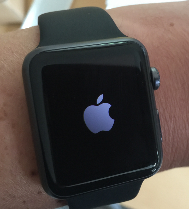 Apple Watch early review setup